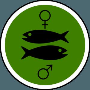 рыбы 2020 гороскоп