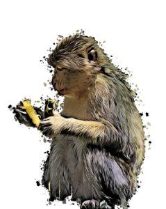 гороскоп для обезьяны 2020