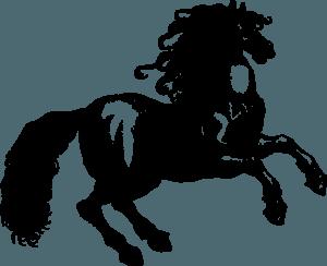 китайский гороскоп на 2020 год лошадь