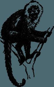 обезьяна гороскоп 2020