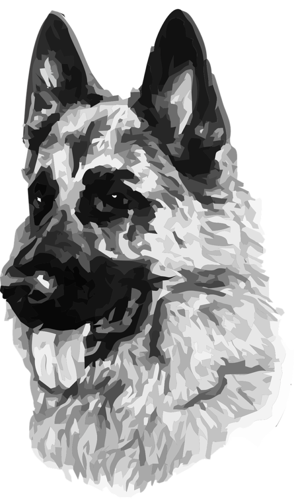 собака гороскоп 2020