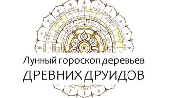 кельтский гороскоп растений по луне
