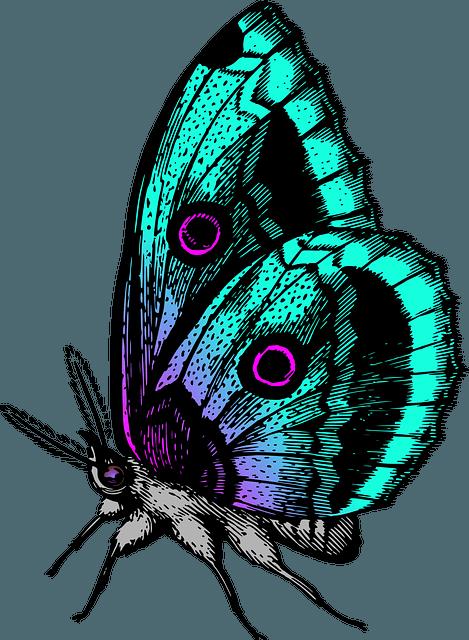 бабочка кельтский гороскоп