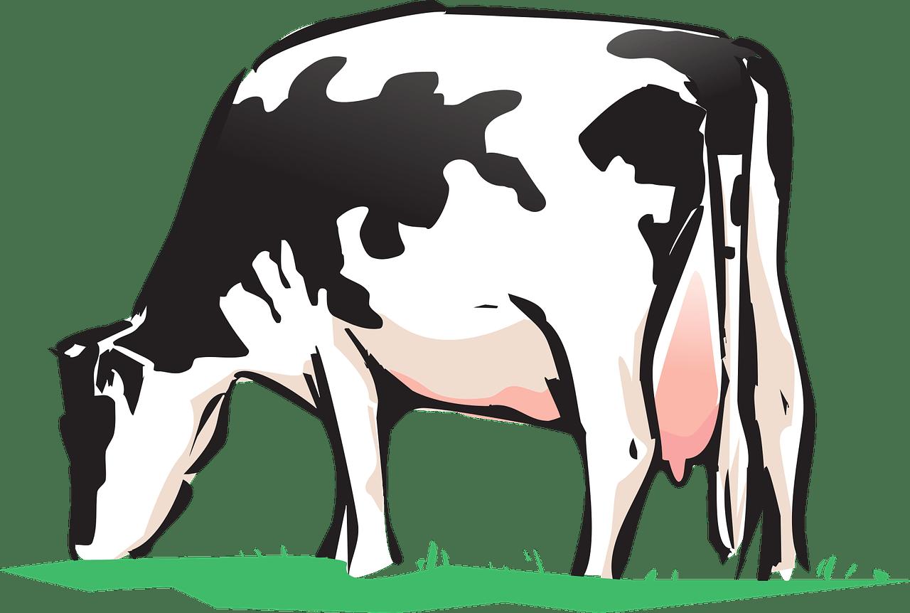 корова бык кельтский гороскоп